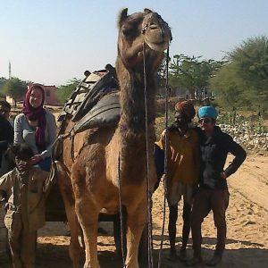 Rajasthantour